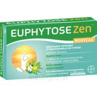 Euphytosezen Comprimés B/30 à TIGNIEU-JAMEYZIEU