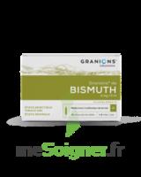 GRANIONS DE BISMUTH 2 mg/2 ml S buv 10Amp/2ml à TIGNIEU-JAMEYZIEU