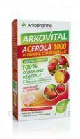 Arkovital Acérola 1000 Comprimés à croquer B/30 à TIGNIEU-JAMEYZIEU