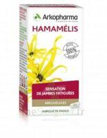 Arkogélules Hamamélis Gélules Fl/45 à TIGNIEU-JAMEYZIEU