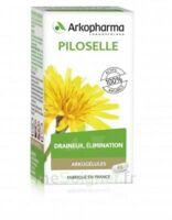 Arkogélules Piloselle Gélules Fl/45 à TIGNIEU-JAMEYZIEU
