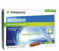 Arkocean Magnesium Marin Solution Buvable Caramel 20 Ampoules/10ml à TIGNIEU-JAMEYZIEU