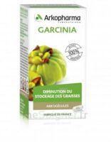 Arkogélules Garcinia Gélules Fl/45 à TIGNIEU-JAMEYZIEU