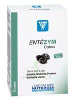 Entezym Cube à mâcher équilibre flore intestinale B/12 à TIGNIEU-JAMEYZIEU