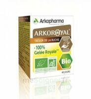 Arkoroyal 100% Gelée royale bio Gelée Pot/40g à TIGNIEU-JAMEYZIEU