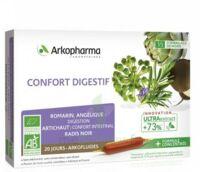 Arkofluide Bio Ultraextract Solution Buvable Confort Digestif 20 Ampoules/10ml à TIGNIEU-JAMEYZIEU
