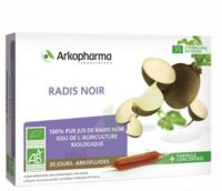 Arkofluide Bio Ultraextract Radis noir Solution buvable 20 Ampoules/10ml à TIGNIEU-JAMEYZIEU