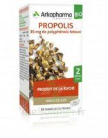 Arkogélules Propolis Bio Gélules Fl/45 à TIGNIEU-JAMEYZIEU