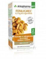 Arkogélules Fenugrec Bio Gélules Fl/40 à TIGNIEU-JAMEYZIEU