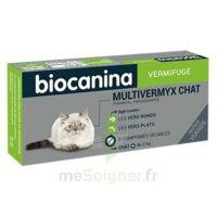 Biocanina Multivermyx Comprimés Vermifuge Chat B/2 à TIGNIEU-JAMEYZIEU