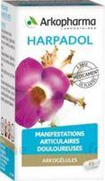 ARKOGELULES HARPAGOPHYTON Gélules Fl/150 à TIGNIEU-JAMEYZIEU