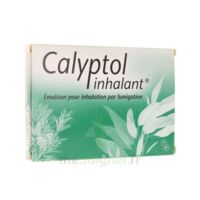 CALYPTOL INHALANT, émulsion pour inhalation par fumigation à TIGNIEU-JAMEYZIEU