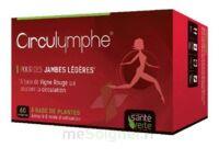 Santé Verte Circulymphe Triple Actions B/60 à TIGNIEU-JAMEYZIEU
