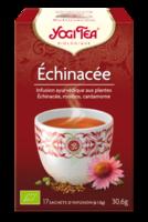 Yogi Tea Echinacee à TIGNIEU-JAMEYZIEU