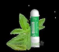 Puressentiel Respiratoire Inhaleur Respiratoire aux 19 Huiles Essentielles - 1 ml à TIGNIEU-JAMEYZIEU