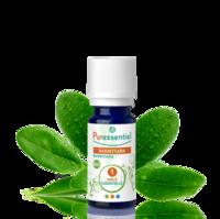 Puressentiel Huiles essentielles - HEBBD Ravintsara BIO* - 5 ml à TIGNIEU-JAMEYZIEU