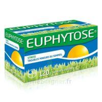 Euphytose Comprimés Enrobés B/120 à TIGNIEU-JAMEYZIEU