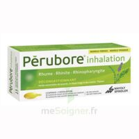 PERUBORE Caps inhalation par vapeur inhalation Plq/15 à TIGNIEU-JAMEYZIEU