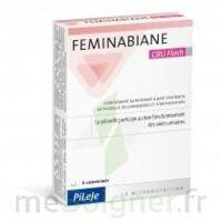 Feminabiane CBU Flash Comprimés à TIGNIEU-JAMEYZIEU
