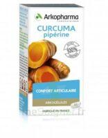 Arkogelules Curcuma Pipérine Gélules Fl/45 à TIGNIEU-JAMEYZIEU