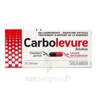 CARBOLEVURE Gélules adulte Plq/30 à TIGNIEU-JAMEYZIEU