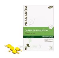 Aromaforce Caps Inhalation Bio B/15 à TIGNIEU-JAMEYZIEU