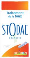 Boiron Stodal Granules Tubes/2 à TIGNIEU-JAMEYZIEU