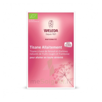 "Weleda Tisane Allaitement ""Fruits rouges"" 2x20g à TIGNIEU-JAMEYZIEU"