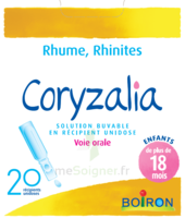 Boiron Coryzalia Solution buvable unidose B/20 à TIGNIEU-JAMEYZIEU