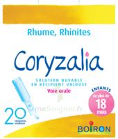 Boiron Coryzalia Solution Buvable Unidose B/20 à TIGNIEU-JAMEYZIEU