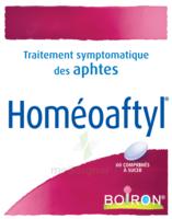 Boiron Homéoaftyl Comprimés à TIGNIEU-JAMEYZIEU