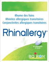 Boiron Rhinallergy Comprimés B/40 à TIGNIEU-JAMEYZIEU